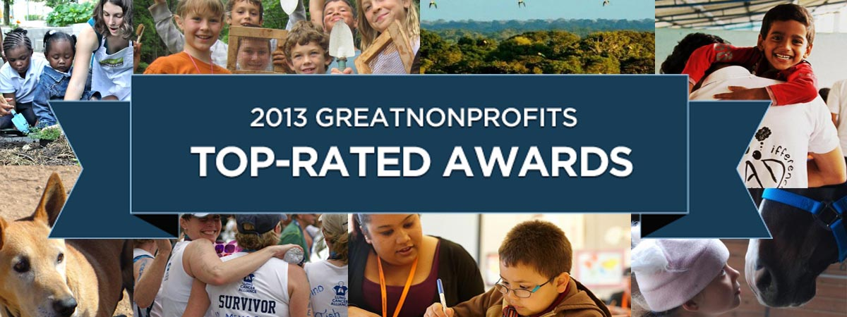 2013 Top-Rated Awards Non Profit