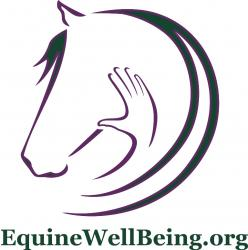 Equine WellBeing Rescue  - charity reviews, charity ratings, best charities, best nonprofits, search nonprofits