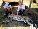 Save the Cheetah - charity reviews, charity ratings, best charities, best nonprofits, search nonprofits