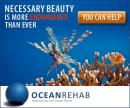 OceanRehab - charity reviews, charity ratings, best charities, best nonprofits, search nonprofits