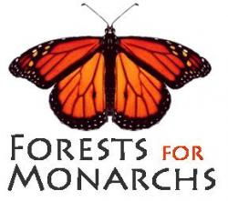 Forests for Monarchs - charity reviews, charity ratings, best charities, best nonprofits, search nonprofits
