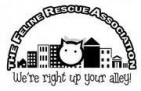 The Feline Rescue Association, Inc. - charity reviews, charity ratings, best charities, best nonprofits, search nonprofits