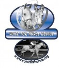Voice for Horses Rescue Network - charity reviews, charity ratings, best charities, best nonprofits, search nonprofits