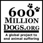 600 MILLION STRAY DOGS NEED YOU                                        - charity reviews, charity ratings, best charities, best nonprofits, search nonprofits