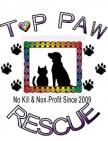 Top Paw Rescue Inc - charity reviews, charity ratings, best charities, best nonprofits, search nonprofits