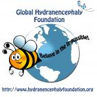Global Hydranencephaly Foundation - charity reviews, charity ratings, best charities, best nonprofits, search nonprofits