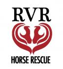 RVR Horse Rescue - charity reviews, charity ratings, best charities, best nonprofits, search nonprofits
