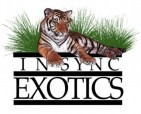 In-Sync Exotics, Inc. - charity reviews, charity ratings, best charities, best nonprofits, search nonprofits