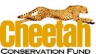 Cheetah Conservation Fund - charity reviews, charity ratings, best charities, best nonprofits, search nonprofits