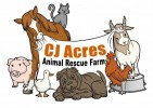 CJ Acres Animal Rescue Farm - charity reviews, charity ratings, best charities, best nonprofits, search nonprofits