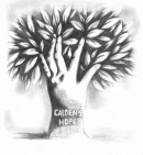 CAIDENS HOPE                                                           - charity reviews, charity ratings, best charities, best nonprofits, search nonprofits