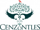 LOS CENZONTLES MEXICAN ARTS CENTER - charity reviews, charity ratings, best charities, best nonprofits, search nonprofits