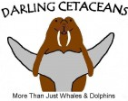 DARLING CETACEANS - charity reviews, charity ratings, best charities, best nonprofits, search nonprofits