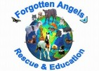 Forgotten Angels Rescue & Education Center Inc. - charity reviews, charity ratings, best charities, best nonprofits, search nonprofits