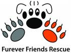 Furever Friends Rescue - charity reviews, charity ratings, best charities, best nonprofits, search nonprofits