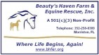 Beauty's Haven Farm and Equine Rescue - charity reviews, charity ratings, best charities, best nonprofits, search nonprofits