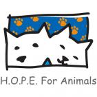 HOPE FOR ANIMALS - charity reviews, charity ratings, best charities, best nonprofits, search nonprofits
