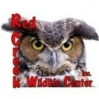RED CREEK WILDLIFE CENTER INC - charity reviews, charity ratings, best charities, best nonprofits, search nonprofits