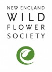NEW ENGLAND WILD FLOWER SOCIETY - charity reviews, charity ratings, best charities, best nonprofits, search nonprofits