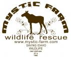 MYSTIC FARM WILDLIFE RESCUE INC - charity reviews, charity ratings, best charities, best nonprofits, search nonprofits