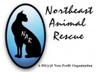 Northeast Animal Rescue - charity reviews, charity ratings, best charities, best nonprofits, search nonprofits