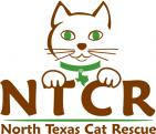 NORTH TEXAS CAT RESCUE - charity reviews, charity ratings, best charities, best nonprofits, search nonprofits
