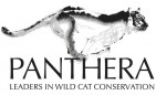 PANTHERA - charity reviews, charity ratings, best charities, best nonprofits, search nonprofits