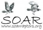 SAVING OUR AVIAN RESOURCES S O A R - charity reviews, charity ratings, best charities, best nonprofits, search nonprofits