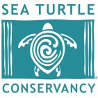 Sea Turtle Conservancy - charity reviews, charity ratings, best charities, best nonprofits, search nonprofits