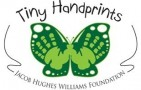 Tiny Handprints - The Jacob Hughes Williams Foundation - charity reviews, charity ratings, best charities, best nonprofits, search nonprofits