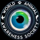 WORLD ANIMAL AWARENESS SOCIETY - charity reviews, charity ratings, best charities, best nonprofits, search nonprofits