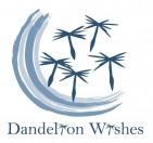 Dandelion Wishes, Inc - charity reviews, charity ratings, best charities, best nonprofits, search nonprofits
