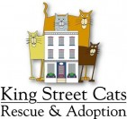 King Street Cats - charity reviews, charity ratings, best charities, best nonprofits, search nonprofits