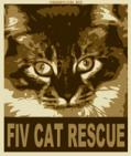 FIV CAT RESCUE                                                         - charity reviews, charity ratings, best charities, best nonprofits, search nonprofits
