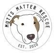 Mutts Matter Rescue - charity reviews, charity ratings, best charities, best nonprofits, search nonprofits