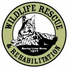 WILDLIFE RESCUE AND REHABILITATION INC - charity reviews, charity ratings, best charities, best nonprofits, search nonprofits