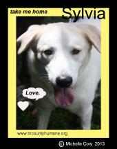 Latest Photo by Tri County Humane Society