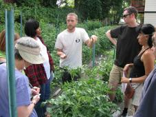 Latest Photo by Victory Programs' ReVision Urban Farm