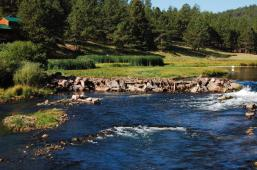 Latest Photo by Coalition for the Upper South Platte (CUSP)