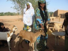 Latest Photo by RAIN FOR THE SAHEL AND SAHARA INC