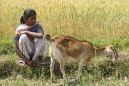Latest Photo by Nepal Youth Foundation