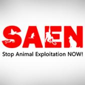Latest Photo by Stop Animal Exploitation NOW!
