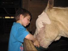 Latest Photo by HORSE RESCUE RELIEF AND RETIREMENT FUND INC
