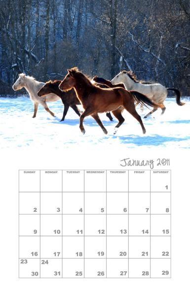 2011 Fundraising Calendar