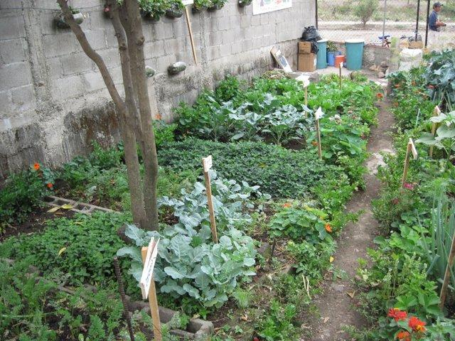 CdA Demonstration Garden
