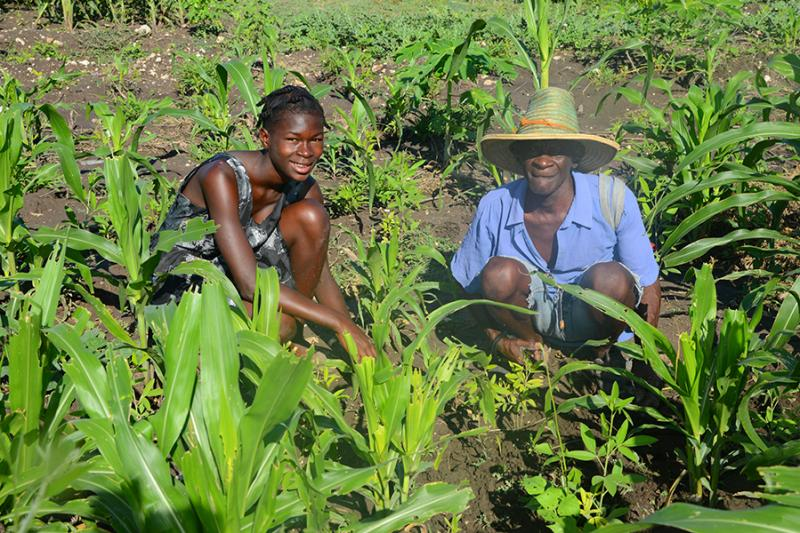 Family working together on their garden plot in Miracle Village. Love A Child offers Agricultural Training seminars to help Haitians become self-sustainable.
