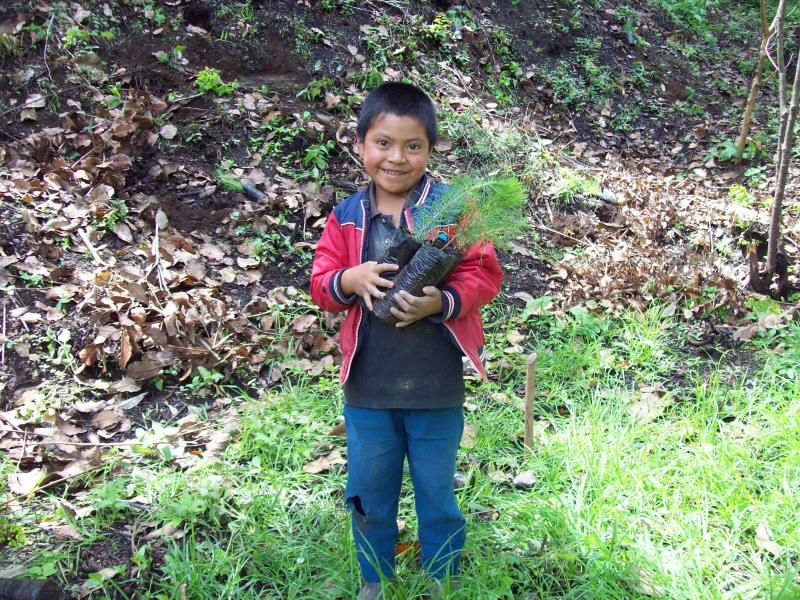 A helper in Xecubal where AIR planted 500 trees one day