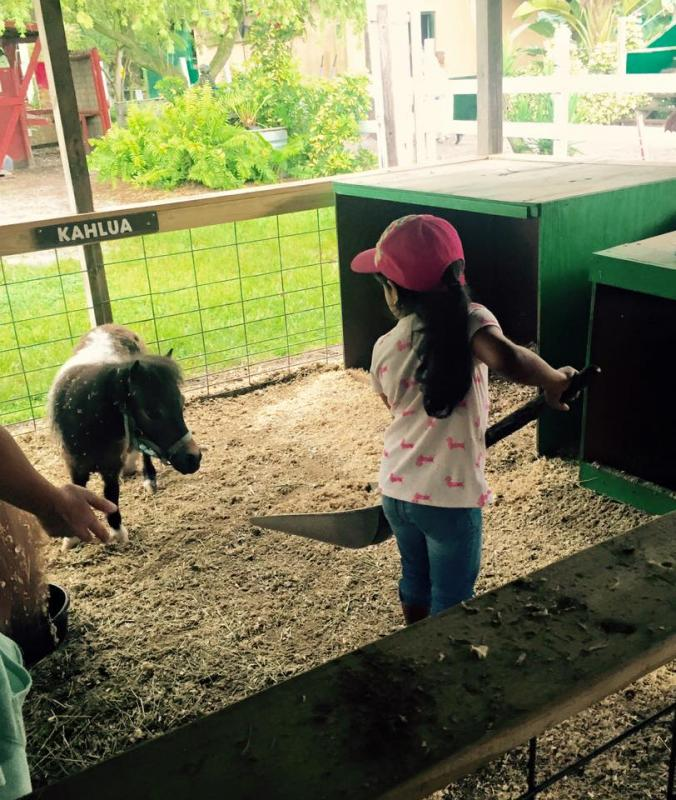 Learning Responsibility - Farm Chores
