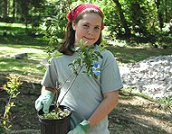 Each year, thousands of volunteers participate in watershed restoration efforts.