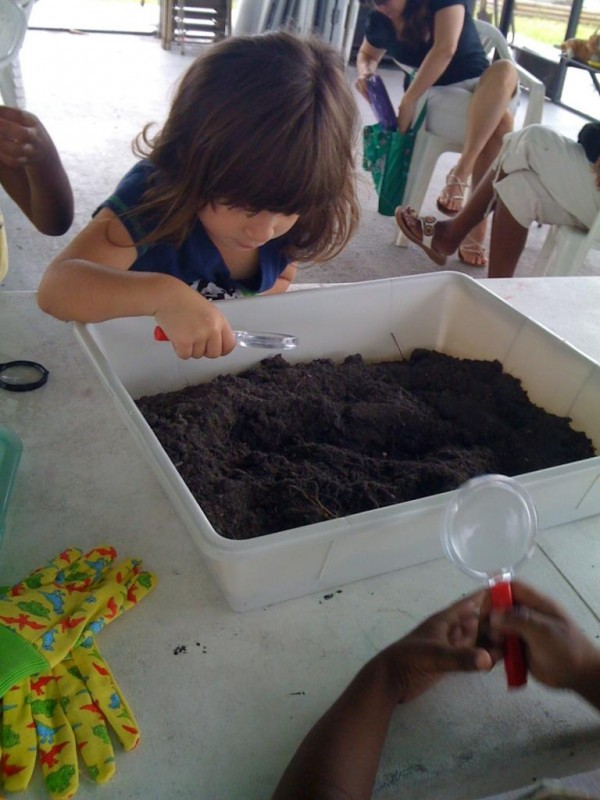 A preschooler learning about crawling critters that live in our backyards!